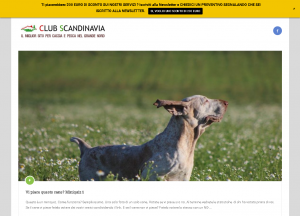 Club Scandinavia (Svezia) – sezione QUIZ